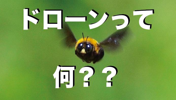 【入門編】今さら聞けない!|そもそもドローンって何??