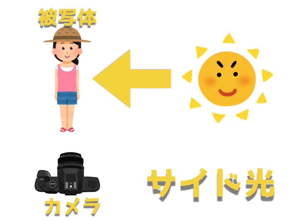 写真撮影における『順光・逆光・サイド光・半逆光』について解説