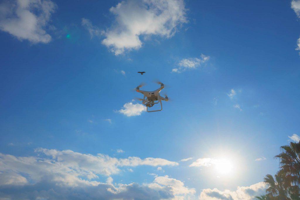 墜落原因6|トンビなど鳥類に襲われるドローン