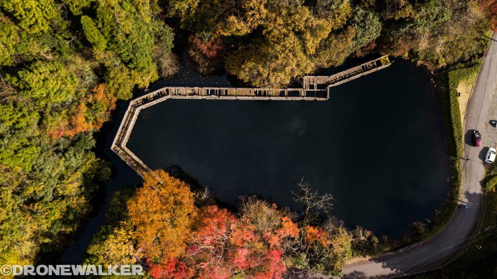 ドローンで楽しむ滋賀県秋の紅葉