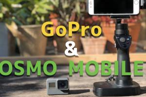 Go ProのスタビライザーにOSMO MOBILEをおすすめな2つの理由