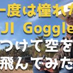 DJI Gogglesレビュー|一度はやって見たい!ゴーグル付けて空を飛びました。。