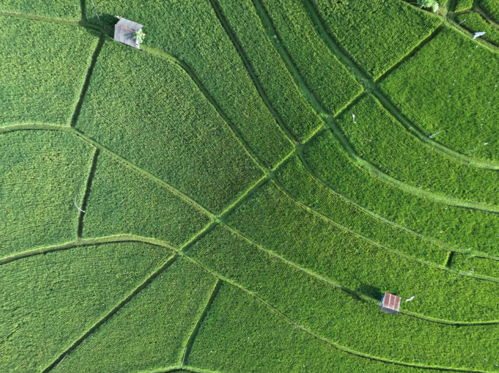 MavicAIRで撮影した空撮写真