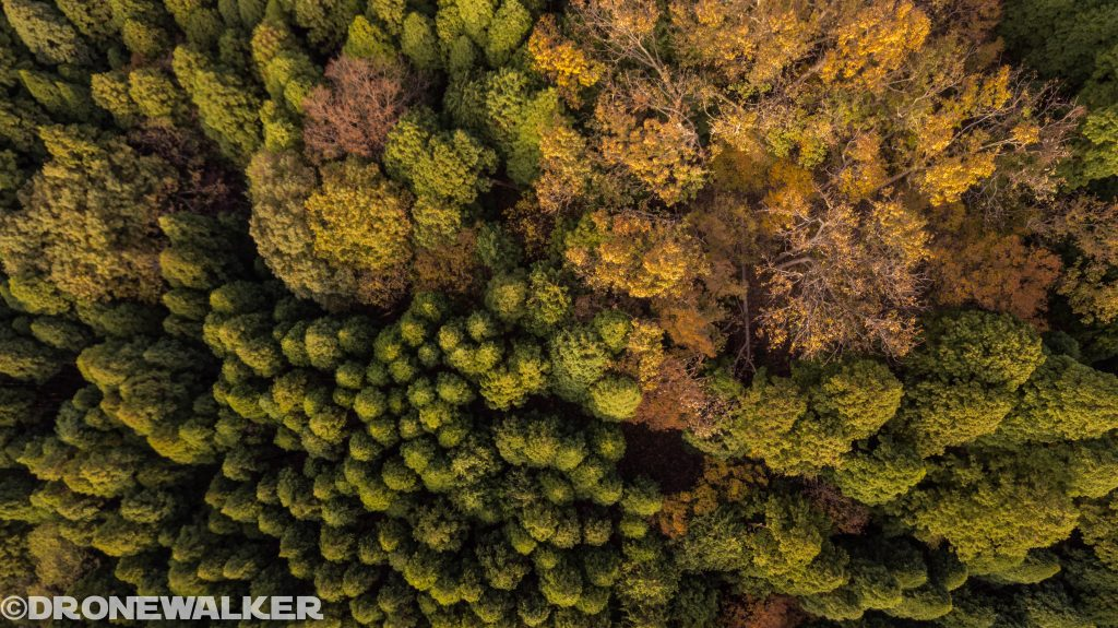 空撮写真上達術|光と影で写真にストーリーと感情を乗せる