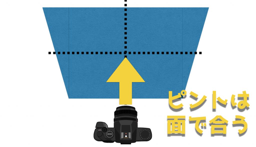 カメラのF値|絞りの基礎を学んでピント範囲と光の量を自由に調整しよう