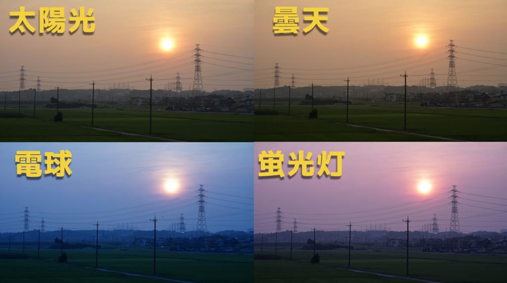 カメラ入門|ホワイトバランスの色温度を理解して写真表現を豊かにしよう!