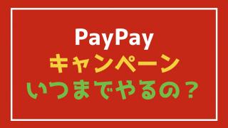 『PayPay(ペイペイ)』の20%キャンペーンっていつまでやってるの?