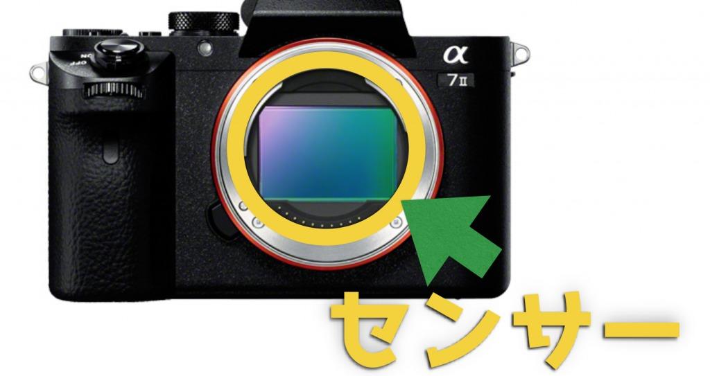 【ミラーレス一眼レフ】Sony α(7・9・6400)全種類比較と選び方