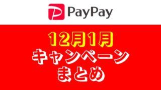 【12月のPayPayキャンペーンまとめ】「家電量販7Days」&「ダイソー」で年末はお得だぞ!