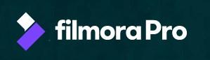 【動画編集中級者向け】FilmoraProとフィモーラ9の違いを徹底解説