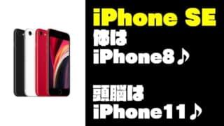 【体はiPhone8♪頭脳はiPhone11♪】『iPhone SE』の性能まとめ