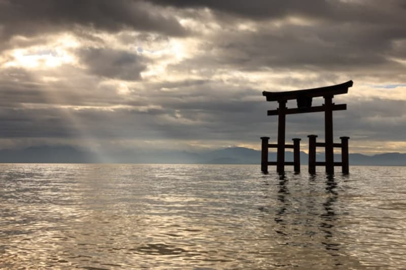 【キヤノン最高峰】『EOS R5』+『RF24-70』の写真作例レビュー!