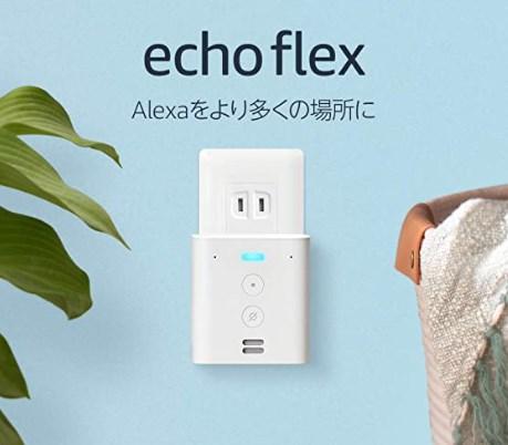 【プラグイン式】Echo Flexは半額の1490円