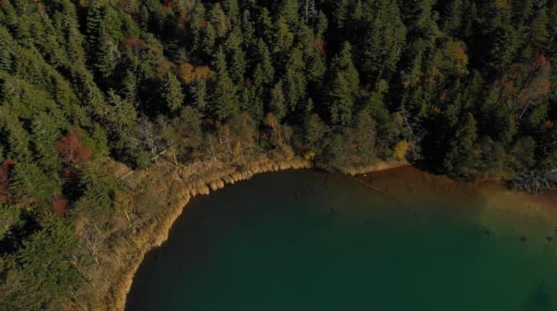 時が止まる湖「オンネトー」のコバルトブルー