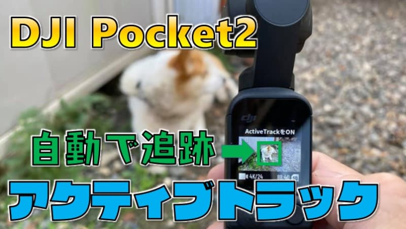 【人や動物を自動追尾】『DJIポケット2』アクティブトラックの使い方
